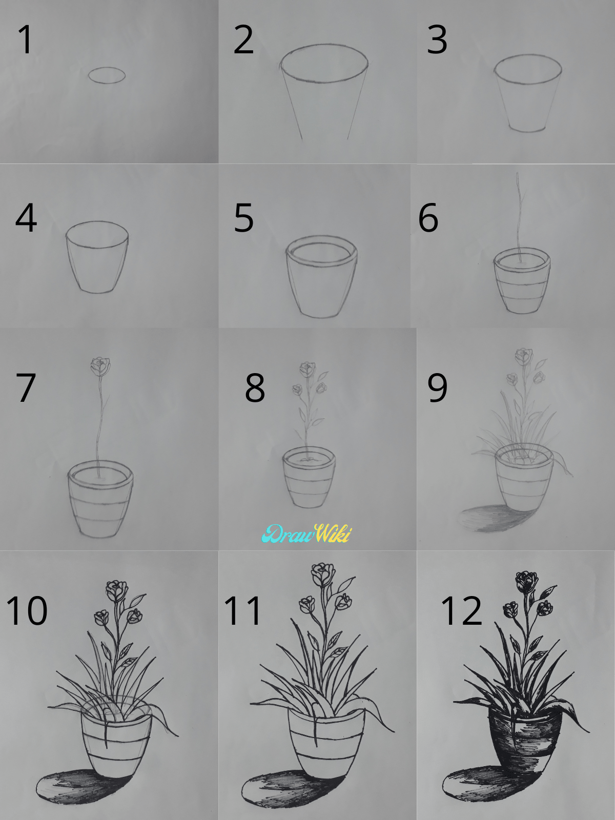 How to draw a flower with pot steps