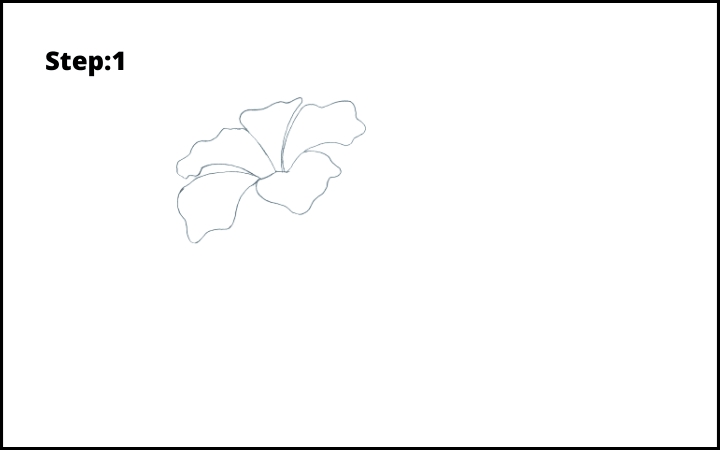 how to draw hibiscus flower step 1