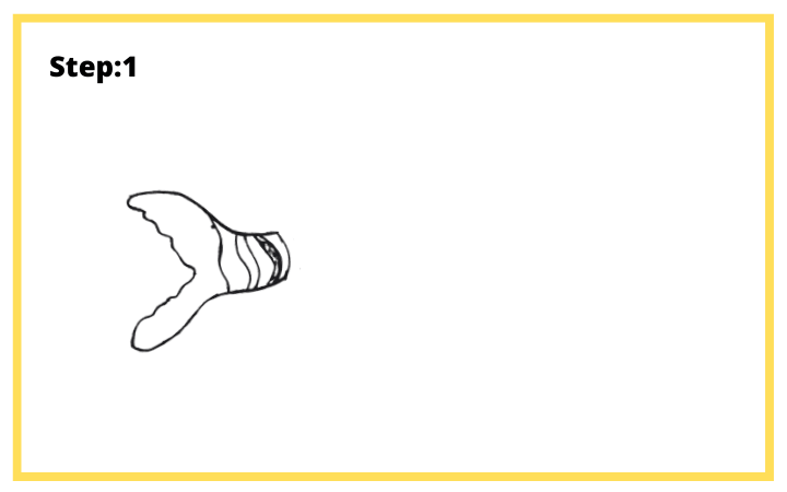 How to draw Butterflyfish  step 1