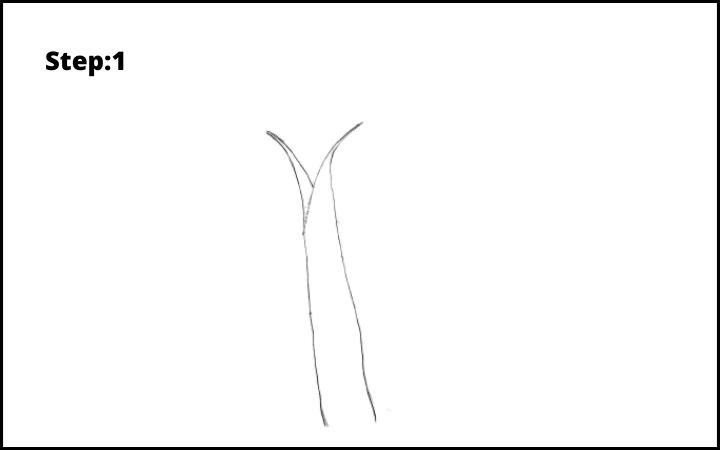 How to Draw Banana Tree Step 1