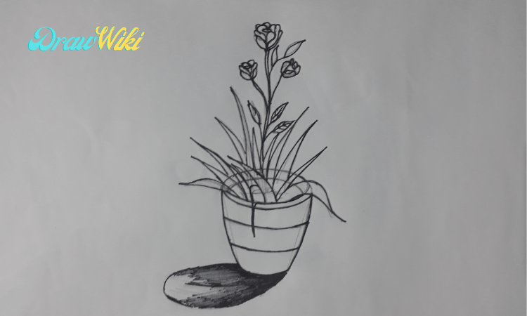 How to draw a flower with pot step 10
