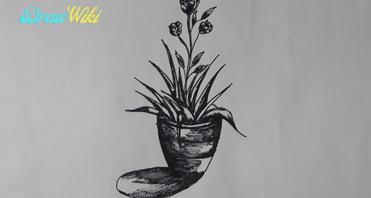 How to draw a flower with pot step 12