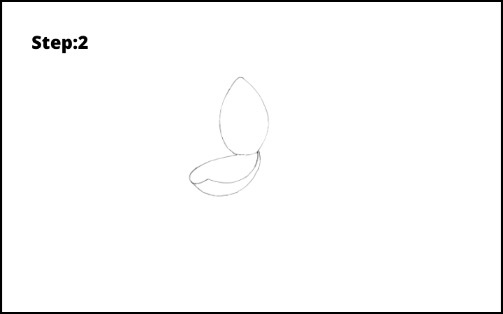 how to draw lotus flower step 2