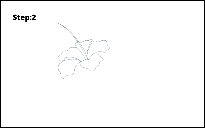 how to draw hibiscus flower step 2