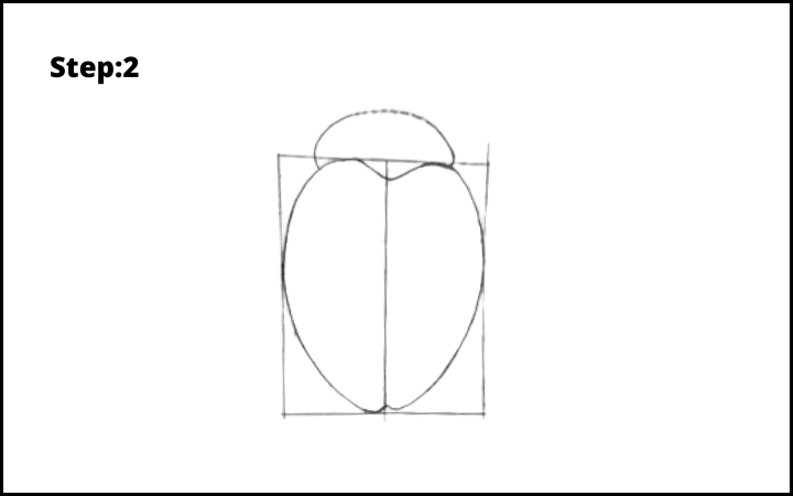 How to draw a bug  step 2