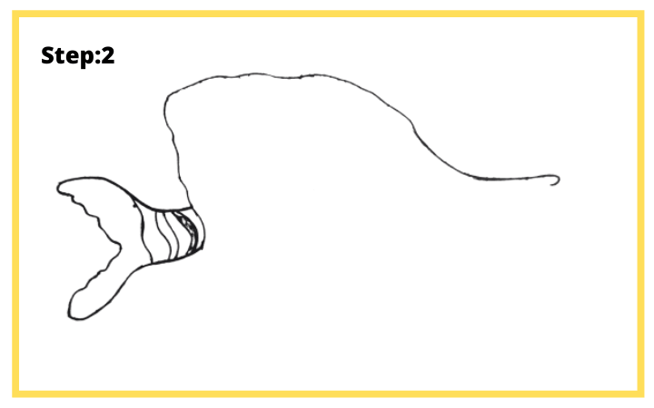 How to draw Butterflyfish  step 2