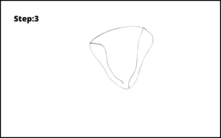 how to draw a magnolia flower step 3