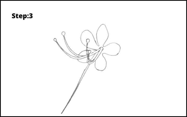 How to draw pagoda flower  step 3