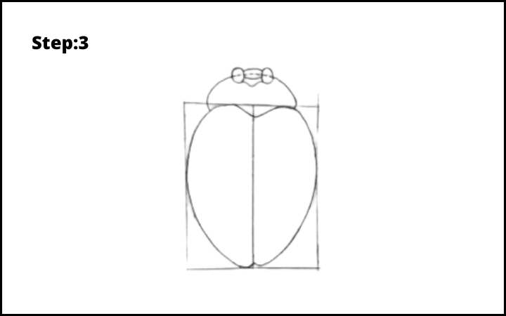 How to draw a bug  step 3