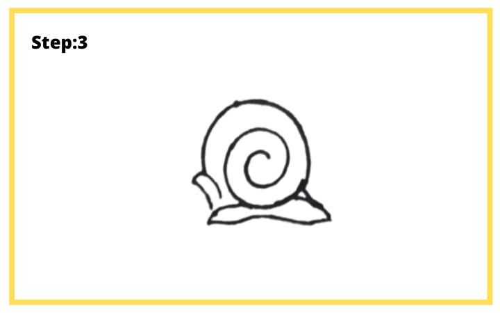 how to draw a shell step 3