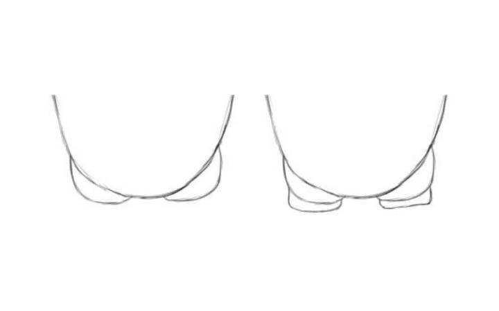 Step 1: Basic Shapes