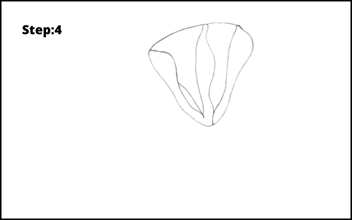 how to draw a magnolia flower step 4