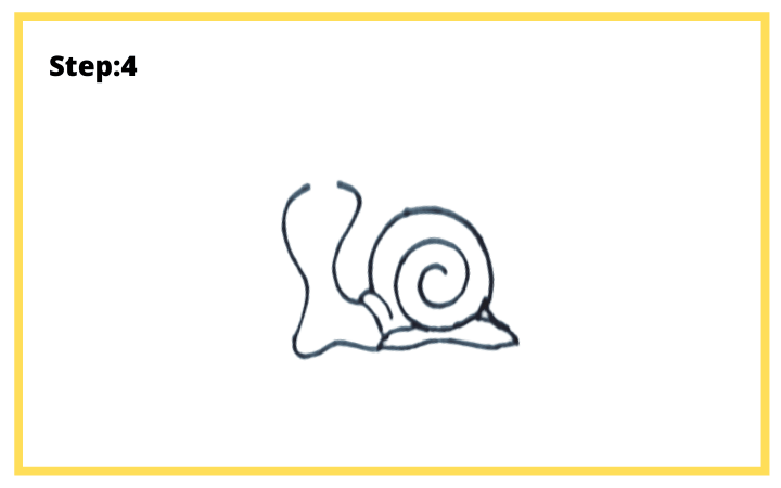 how to draw a shell step 4