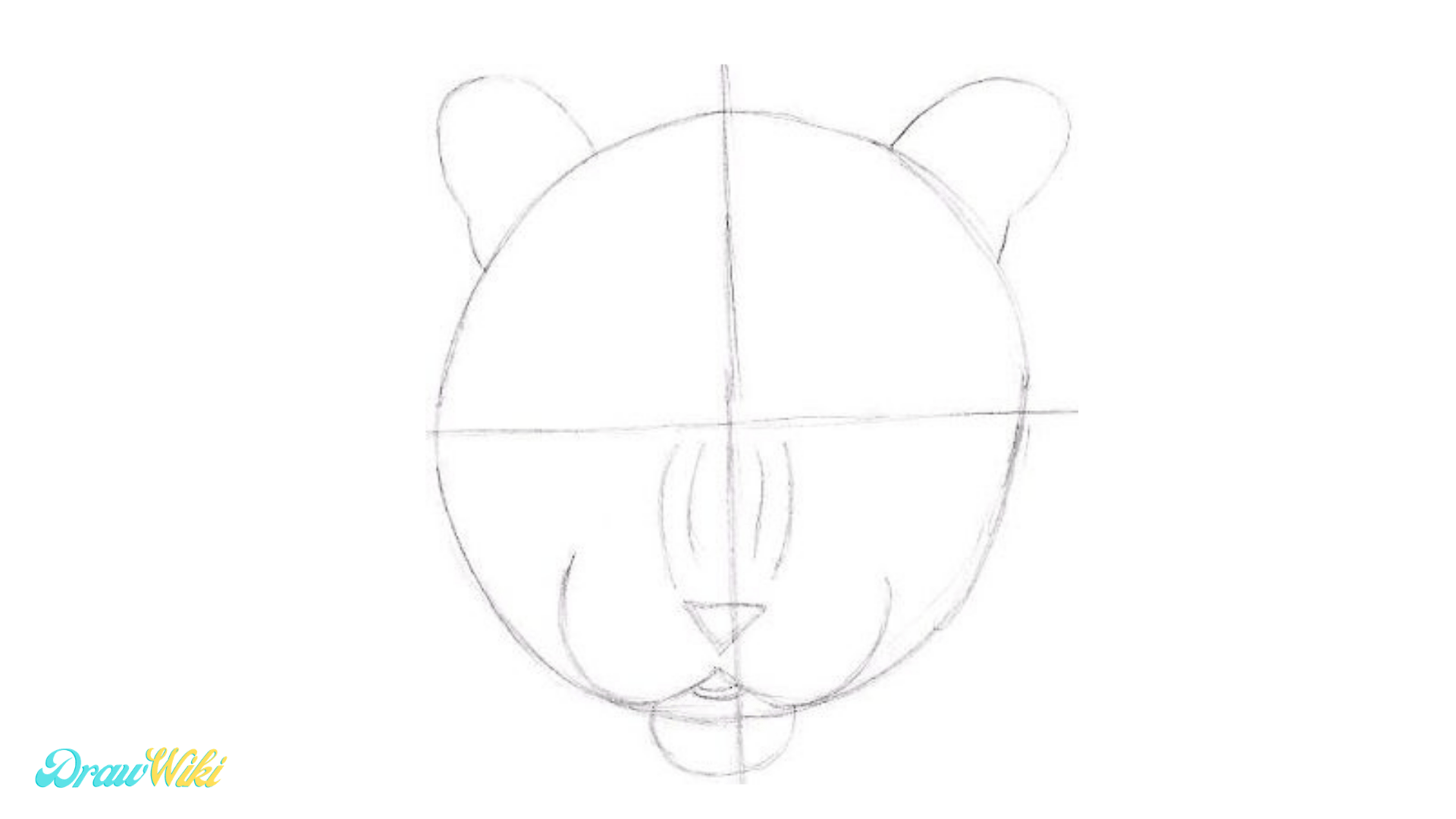 Step 4: Draw Nose & Chin