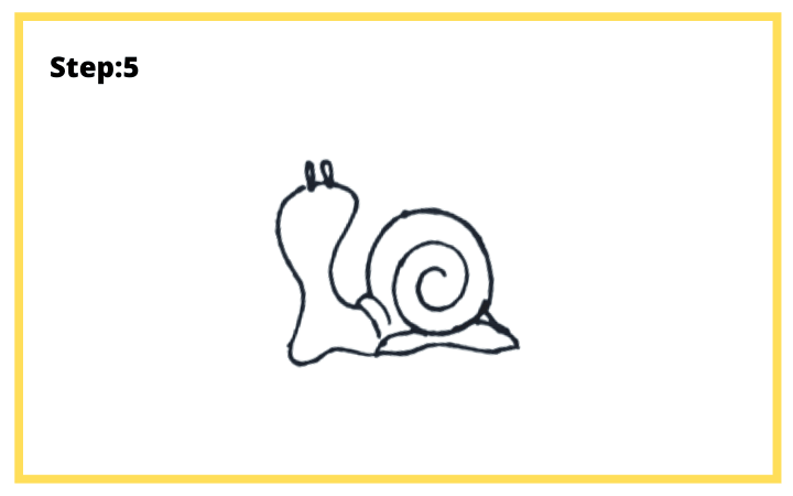how to draw a shell step 5