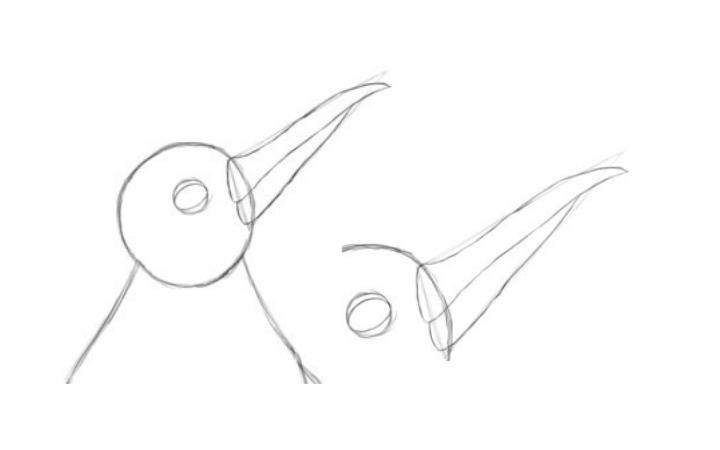 Step 2: Head Details