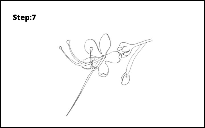 How to draw pagoda flower  step 7