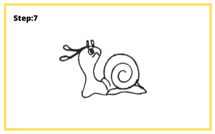 how to draw a shell step 7 final step