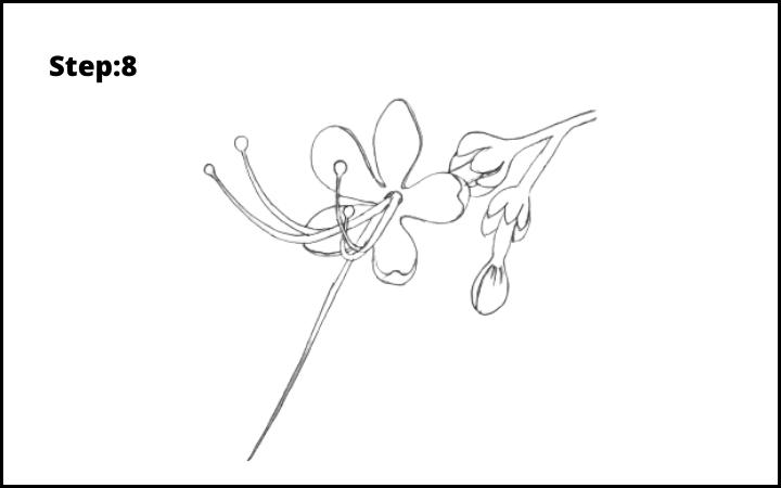 How to draw pagoda flower  step 8