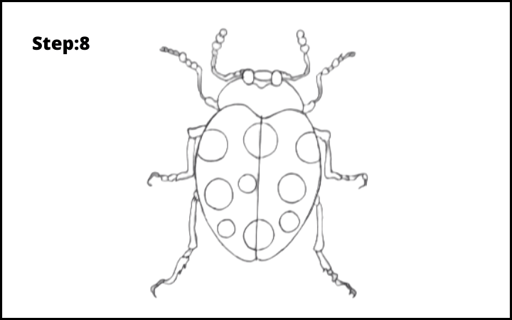 How to draw a bug  step 8
