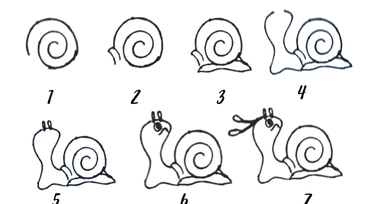 how to draw a shell