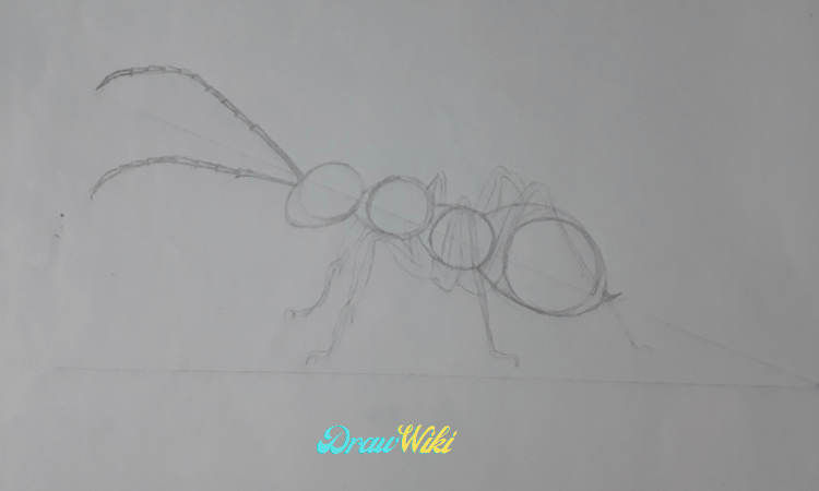 Draw an ant antenna
