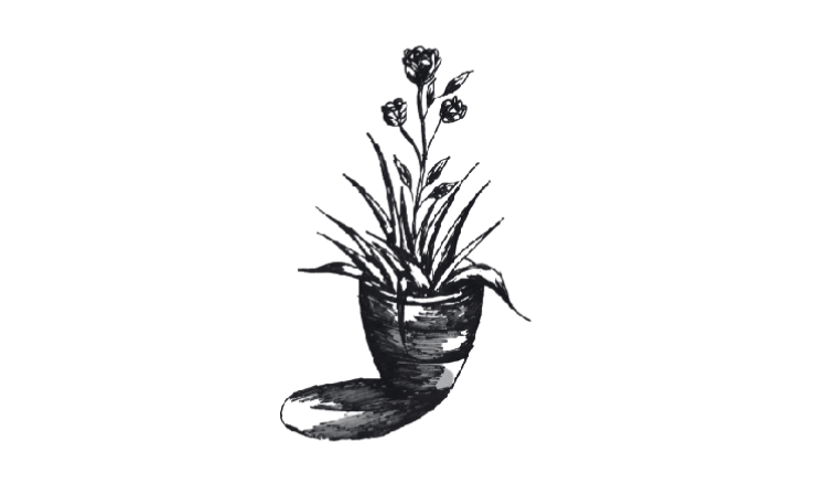 draw a flower with pot