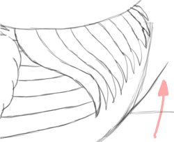 Step 7: Draw Hind End