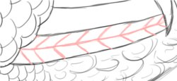 Step 12: Draw Big Feather Texture
