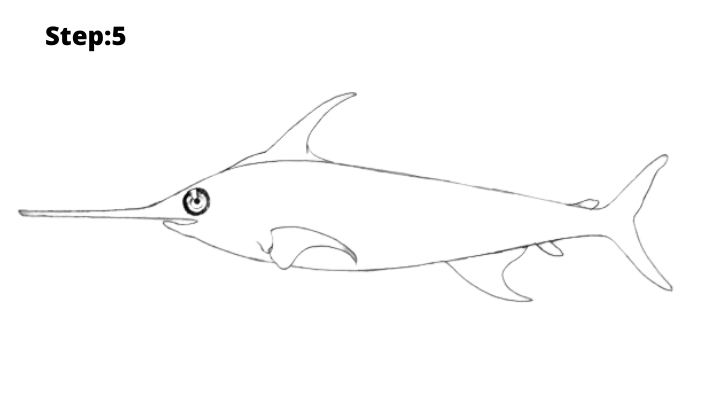Step-5 : Draw  the fish fin
